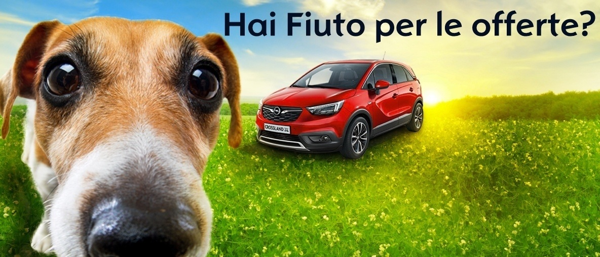 Offerte Opel Viterbo Aprile 2018 Ciminauto